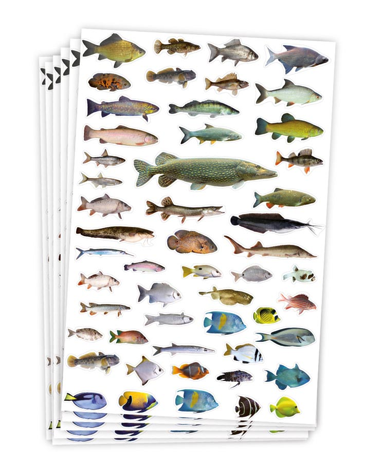 Stickers fishes 300 pcs 6 sheets
